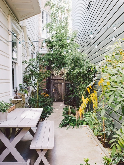 Narrow Side Yard | Houzz regarding Landscaping Ideas For Narrow Side Yard