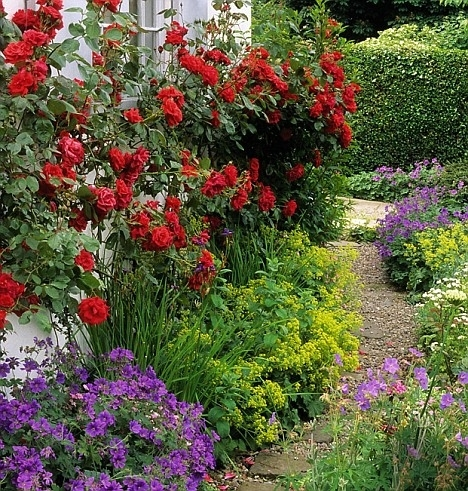 Shady Dealers: Plants To Brighten Up Even The Shadiest Spots in Garden Design For Small Shady Gardens