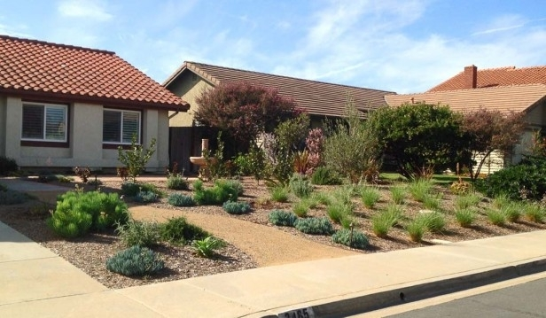 Sustainable Front Yard, Carlsbad | Allee Landscape Design | Front for Landscaping Ideas Front Yard Drought Tolerant