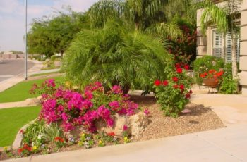 Tropical Landscaping Ideas For Holidays At Home | Design Ideas And inside Tropical Landscaping Ideas Small Front Yard