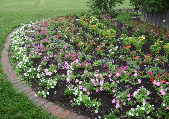 11 Beautiful Rose Garden Designs For Small Yard - Homelilys Decor pertaining to Rose Garden Designs For Small Yard