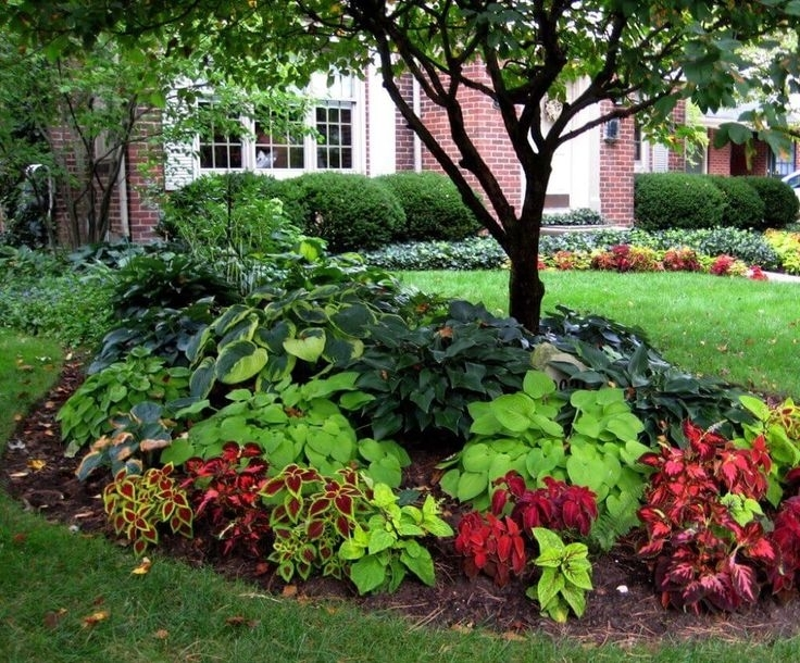 Best 20+ Front Flower Beds Ideas On Pinterest | Flower Beds, Front throughout Landscaping Ideas For Front Yard With Flowers
