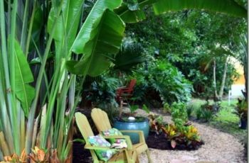 Best 20+ Tropical Gardens Ideas On Pinterest | Tropical Garden with regard to Tropical Garden Designs For Small Gardens