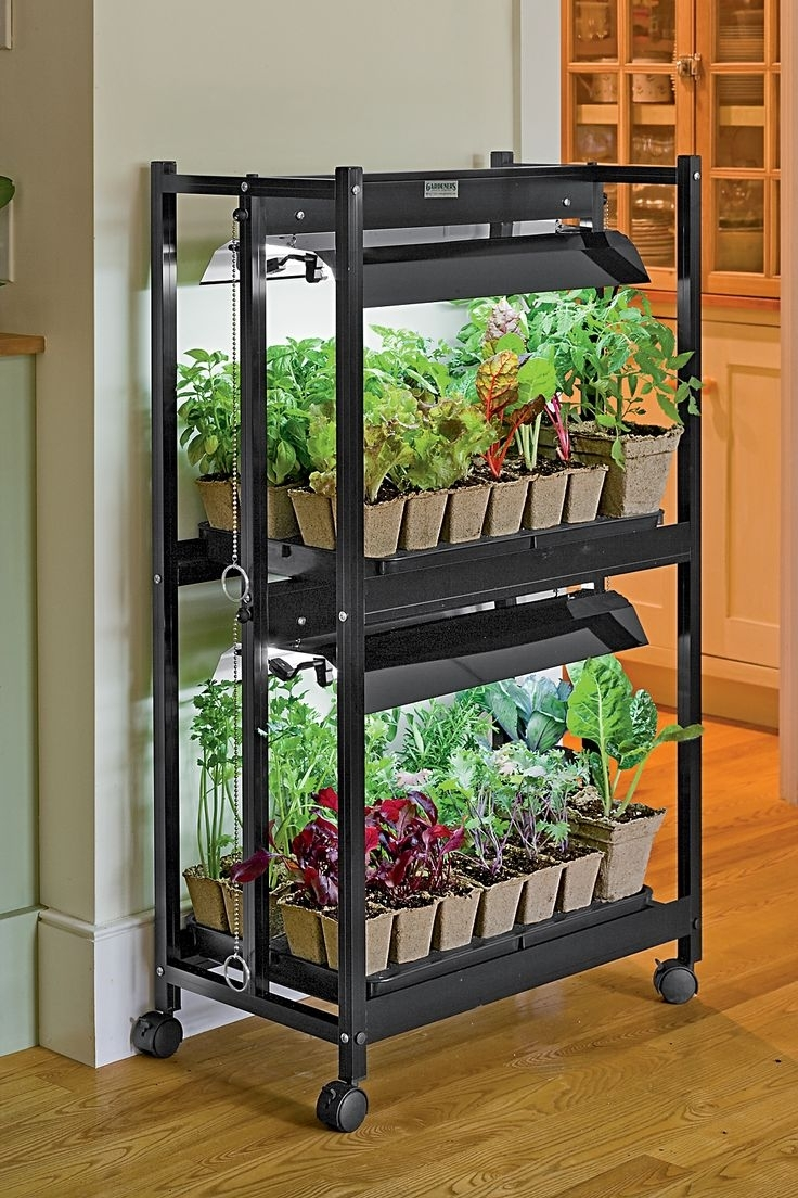 Best 25+ Apartment Vegetable Garden Ideas On Pinterest | Growing with What Is A Garden Apartment