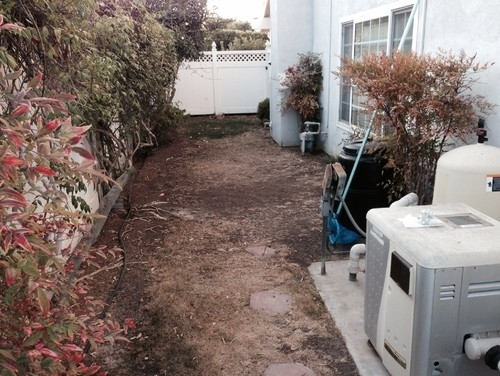 Help! Narrow Side Yard Landscape Ideas Needed! intended for Landscaping Ideas For A Small Side Yard