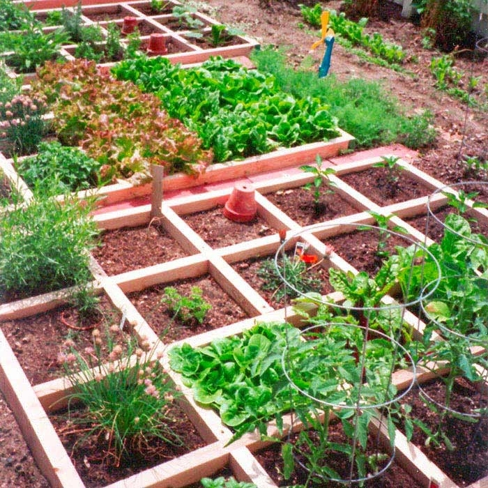 Mountain Gardening: Small-Space Vegetable Gardening in Vegetable Garden Plans For Small Gardens
