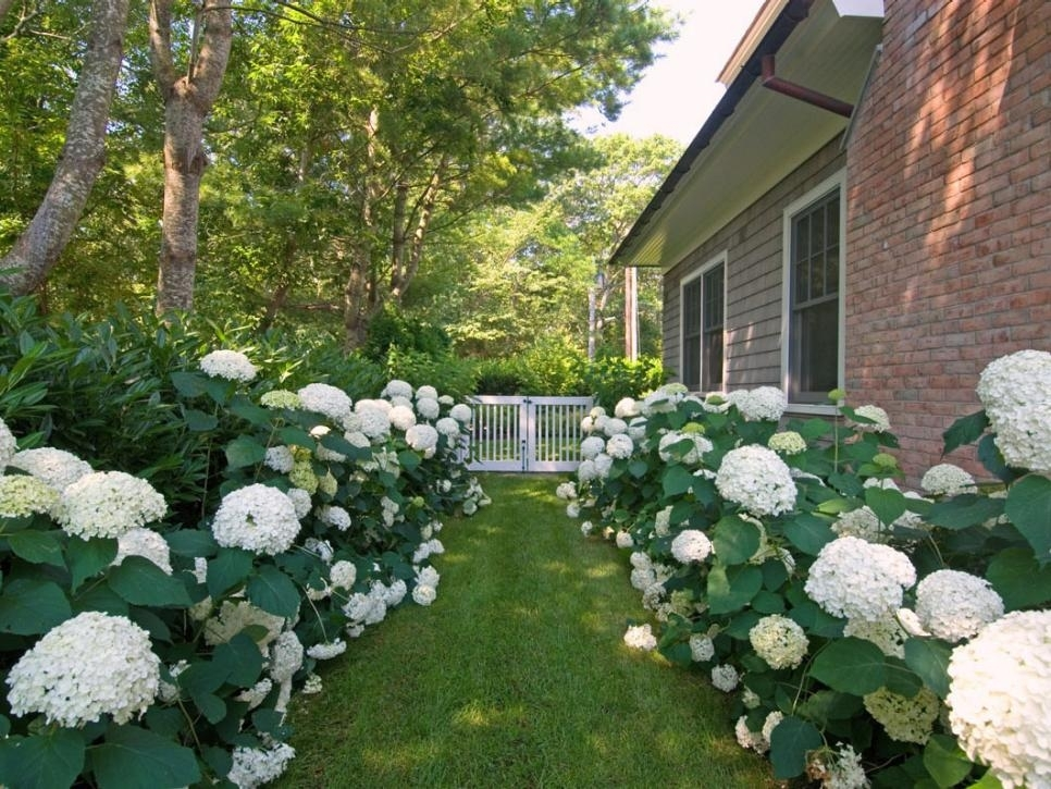Pictures Of Formal English Gardens   Diy pertaining to Landscaping Ideas Front Yard English Garden