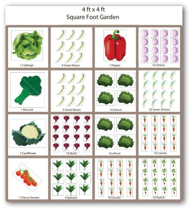Small Vegetable Garden Plans And Ideas throughout Vegetable Garden Plans For Small Gardens