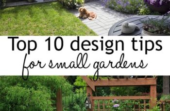 Top 10 Tips For Small Garden Design To Transform Your Space within Garden Design For Small Narrow Gardens