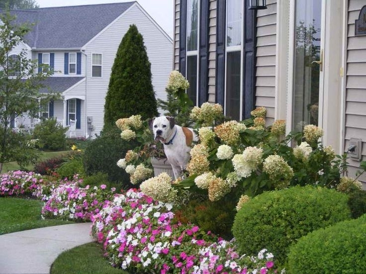 Simple Front Yard Ideas Part - 40: Top 25+ Best Small Front Yards Ideas On Pinterest | Small Front With Regard  To. U201c