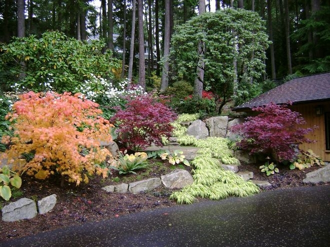 13 Best Hunter Landscape Front Yard Images On Pinterest throughout Landscaping Ideas Front Yard Pacific Northwest