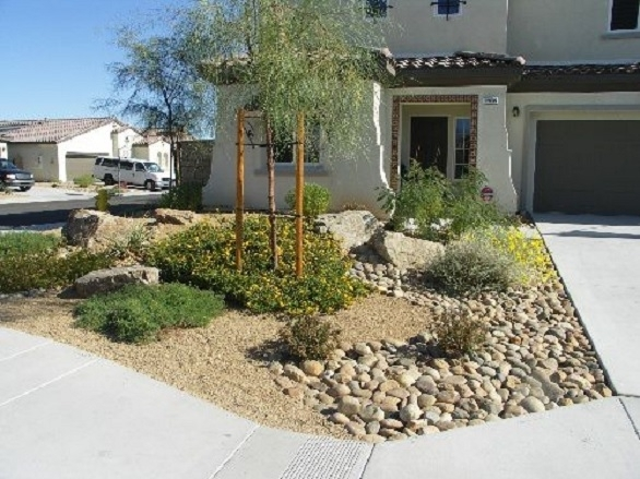 30 Pictures Of Houses With A Front Yard Desert Landscaping Theme pertaining to Landscaping Ideas For Front Yard Desert