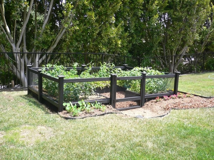 31 Best Garden Fence Images On Pinterest | Vegetables Garden regarding Small Fenced In Backyard Landscaping Ideas