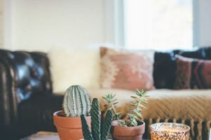 Best 20+ Bohemian Apartment Decor Ideas On Pinterest | Tiny intended for Best Design Collection Paradise Garden Apartments Ideas