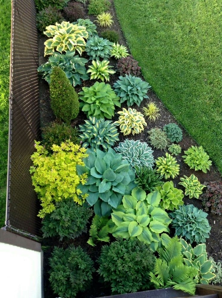 Best 25+ Shade Garden Ideas On Pinterest | Shade Plants, Shade with Garden Design Ideas For Small Shade Gardens