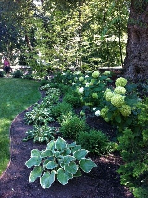Best 25+ Shade Garden Ideas On Pinterest | Shade Plants, Shade with regard to Landscaping Ideas For Front Yard Shade
