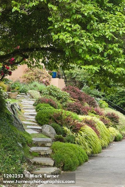 Best 25+ Sloped Front Yard Ideas On Pinterest | Garden Stairs regarding Landscaping Ideas Front Yard Steep Slope