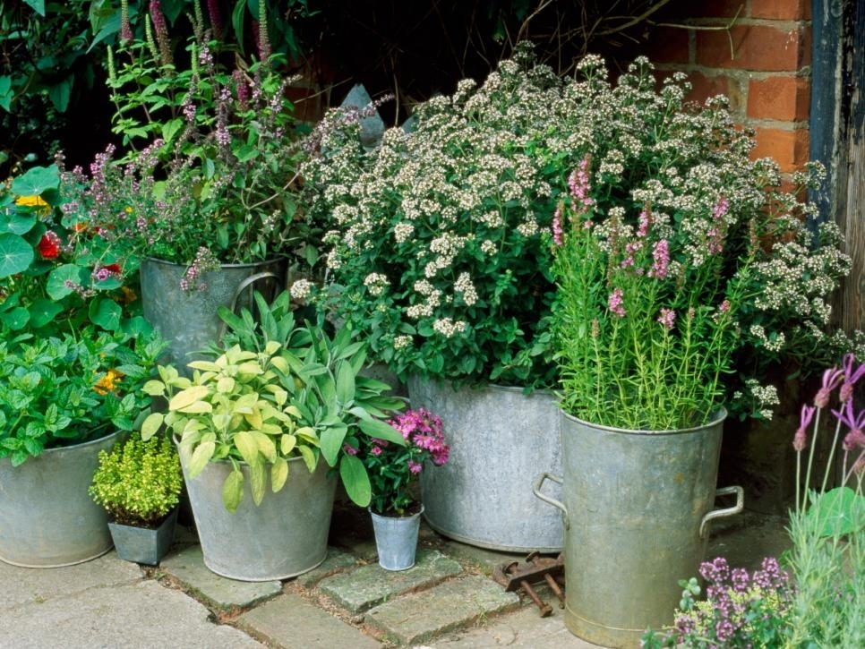 Container And Small-Space Gardening | Diy within Diy Garden Designs For Small Gardens
