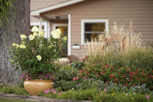 Front Yard Flower Bed Ideas For Beginners   Hgtv pertaining to Flower Garden Ideas For Front Yard
