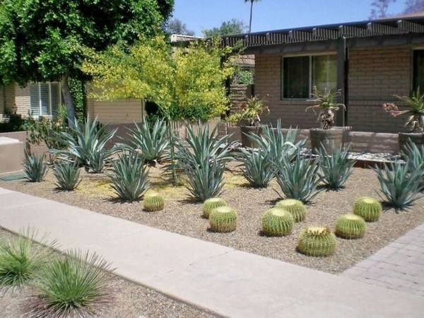 Landscaping Ideas For Small Front Yard Without Grass | Ifmore with regard to Landscaping Ideas For Front Yard Without Grass
