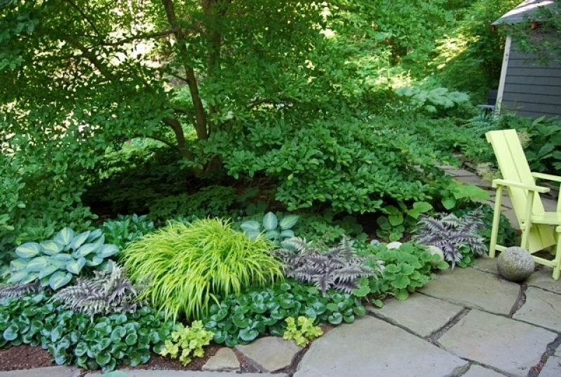 Small Shade Garden Ideas – Erikhansen throughout Garden Design Ideas For Small Shade Gardens