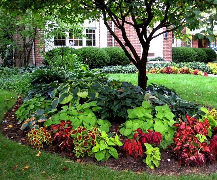Top 25+ Best Small Front Yards Ideas On Pinterest | Small Front within Garden Design For Small Front Yard
