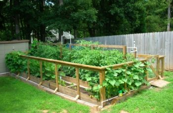 Vegetable Garden Design Raised Beds - Home Design inside Vegetable Garden Ideas Designs Raised Gardens