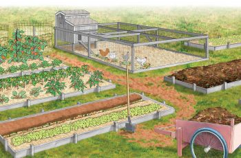 28 Farm Layout Design Ideas To Inspire Your Homestead Dream with Backyard Farm And Garden Usa