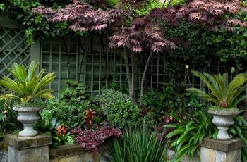 Backyard Garden Oasis – Iemas in Backyard Garden Oasis B&b Middletown Ca
