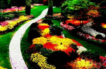 Backyard Ideas For Small Yards On A Budget Simple Landscaping Full intended for Fun Backyard Garden Ideas