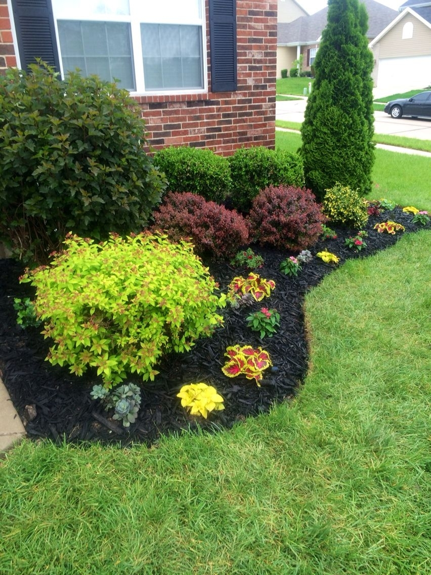 Beautiful Flowerbed! Black Mulch Made A Big Difference! | My Yard throughout Backyard And Garden Difference