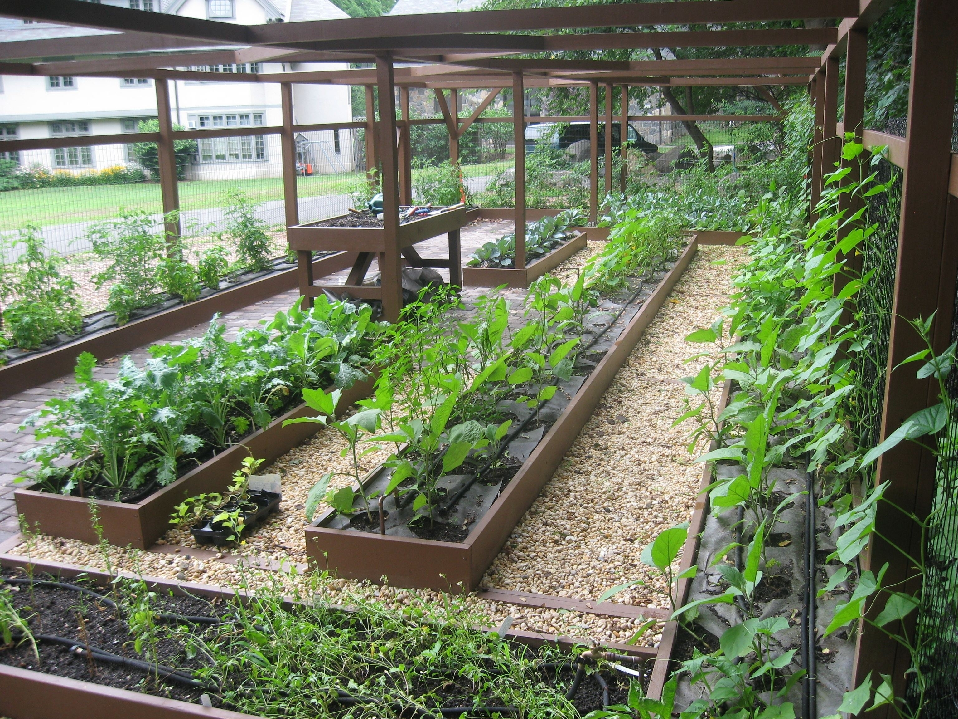 Coolest-Backyard-Fruit-And-Vegetable-Garden-Ideas -With-Inspiration-Interior-Home-Design-Ideas with Backyard Fruit And Vegetable Garden Ideas