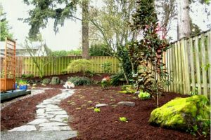 Full Size Of Backyard Ideas No Grass Wonderful Small Garden Design with regard to Backyard Garden No Grass
