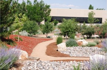 Garden Ideas : Landscaping Rocks Las Vegas Types Of Landscaping with Backyard Garden Las Vegas