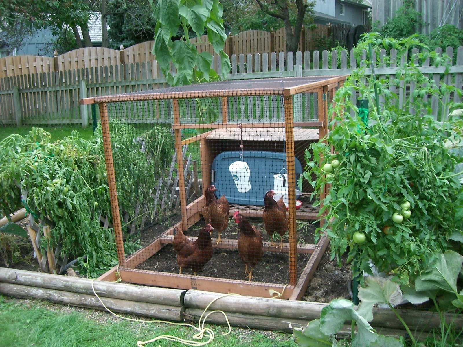 Home Garden Designs: Pools And Landscaping Ideas Vegetable Garden pertaining to Backyard Landscaping Ideas Vegetable Garden