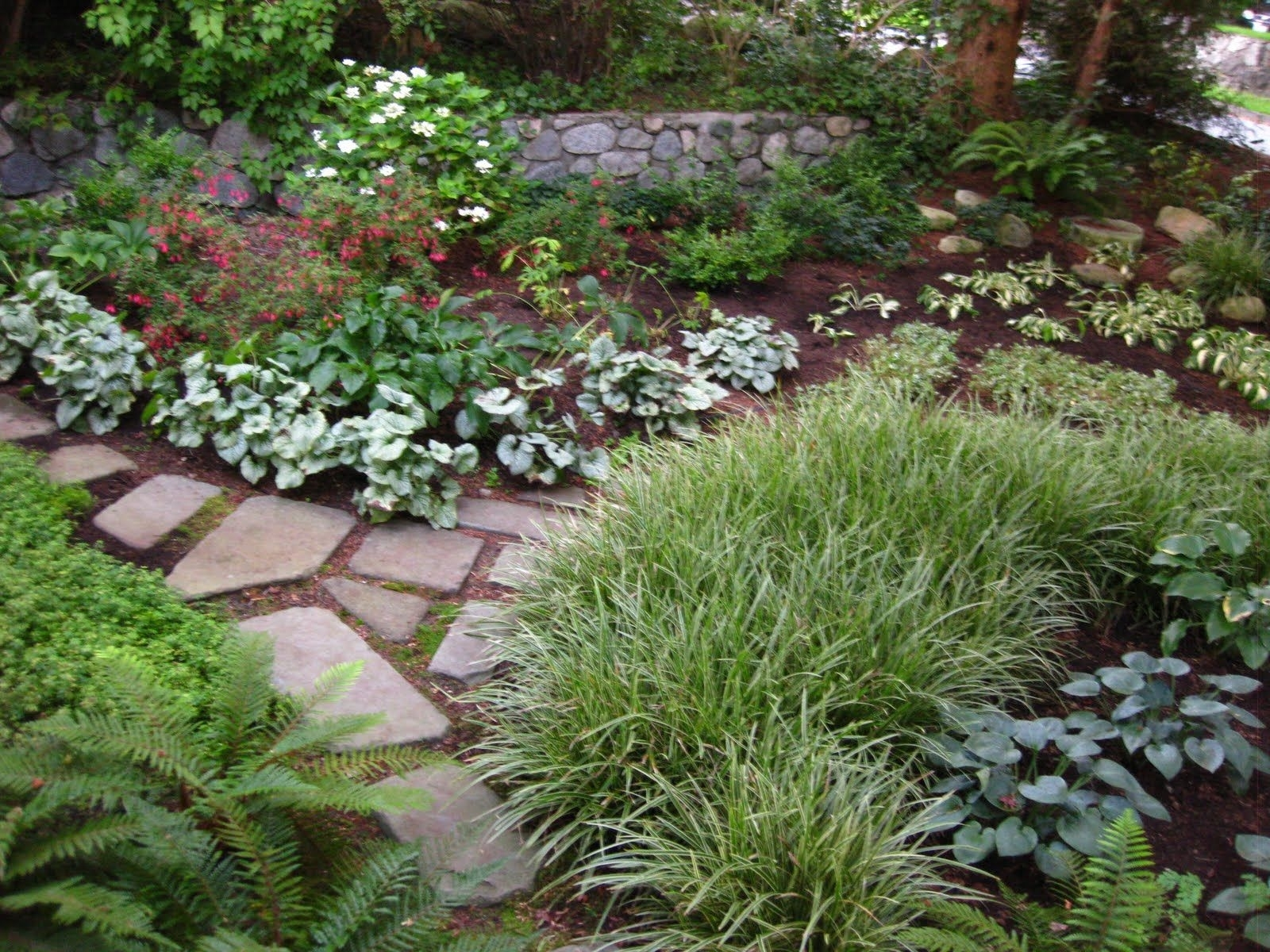 """Landscaping A Shady Corner    -Gardening Chronicles: """"replace for Shady Backyard Garden Ideas"""