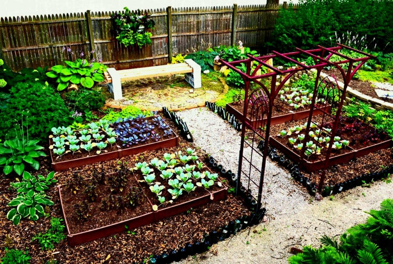 Photo Of Vegetable Garden Layout Ideas And Planning Perfect Backyard in Backyard Garden Layout Ideas