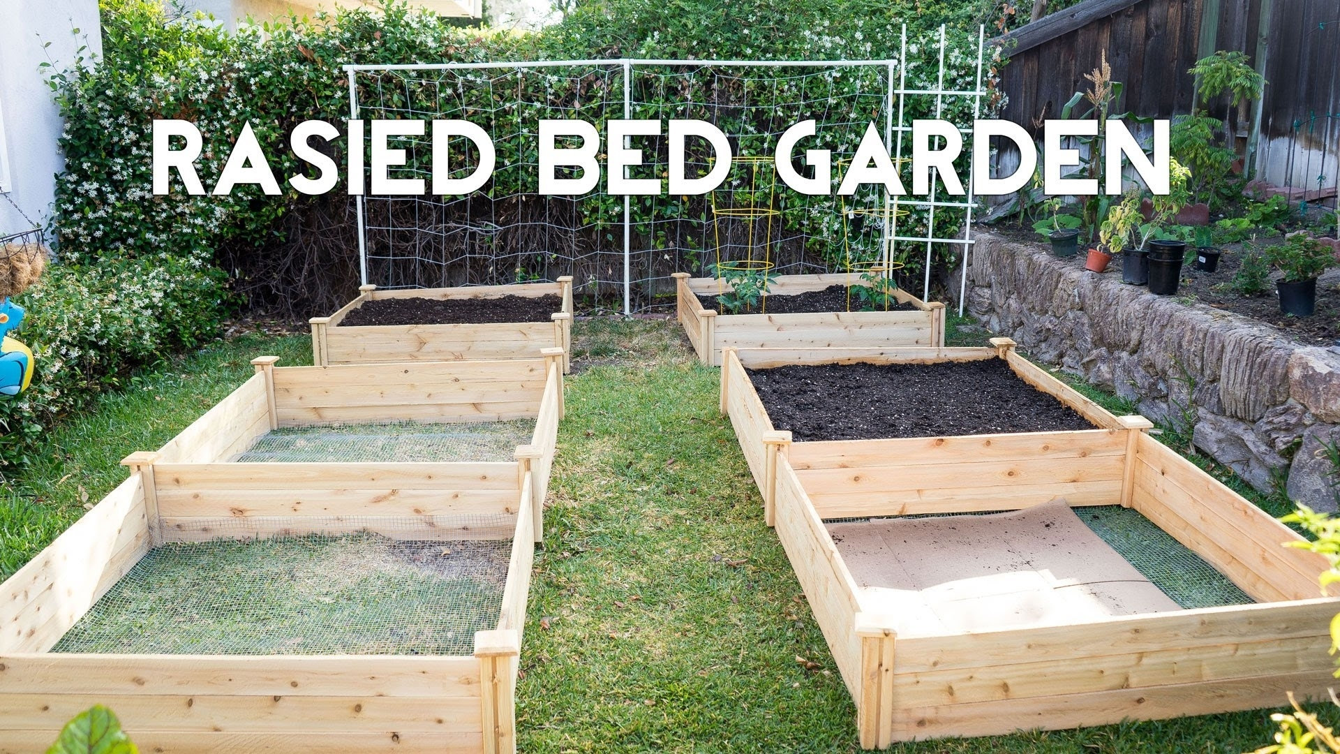 Raised Bed Gardening - How To Start A Garden With Raised Beds - Youtube with Backyard Garden Raised Beds