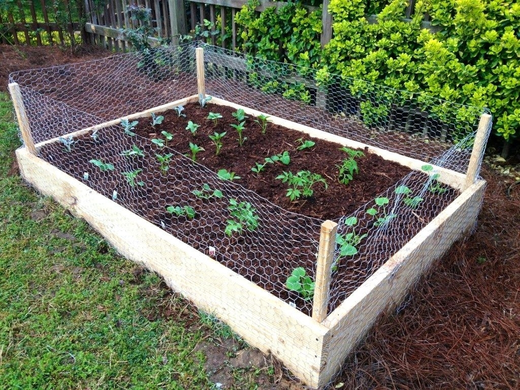 Raised Bed Vegetable Garden On A Slope Impressive Raised Bed with regard to Backyard Vegetable Garden Box