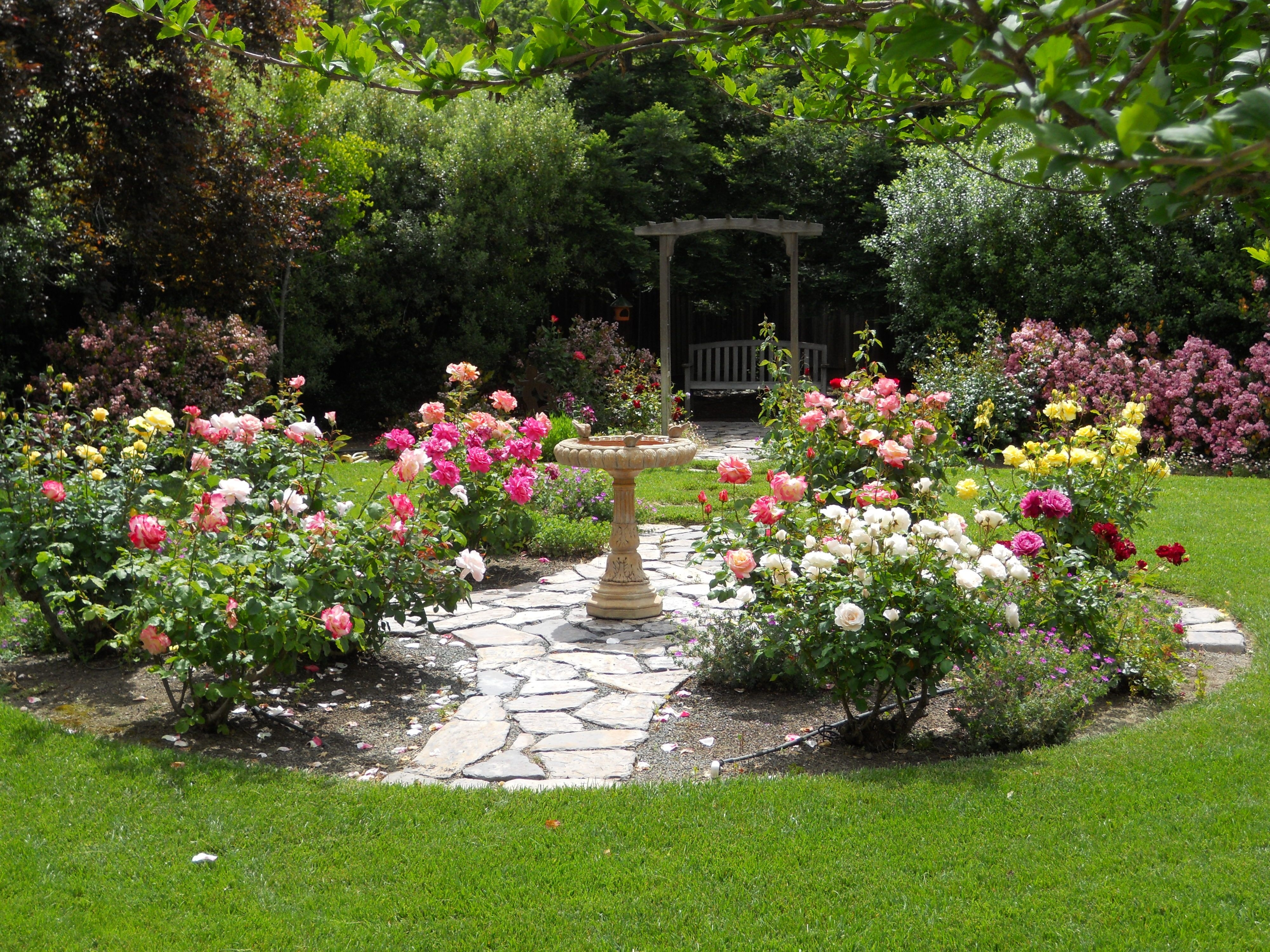 Simple Design Ideas Rose Garden Plans | Flowers | Pinterest | Garden throughout Backyard Rose Garden Plans