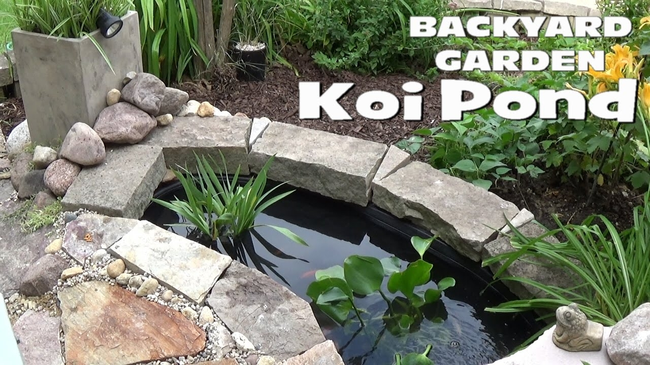 Small Backyard Garden Koi & Goldfish Pond - Setup - Youtube for Backyard Garden Set Up