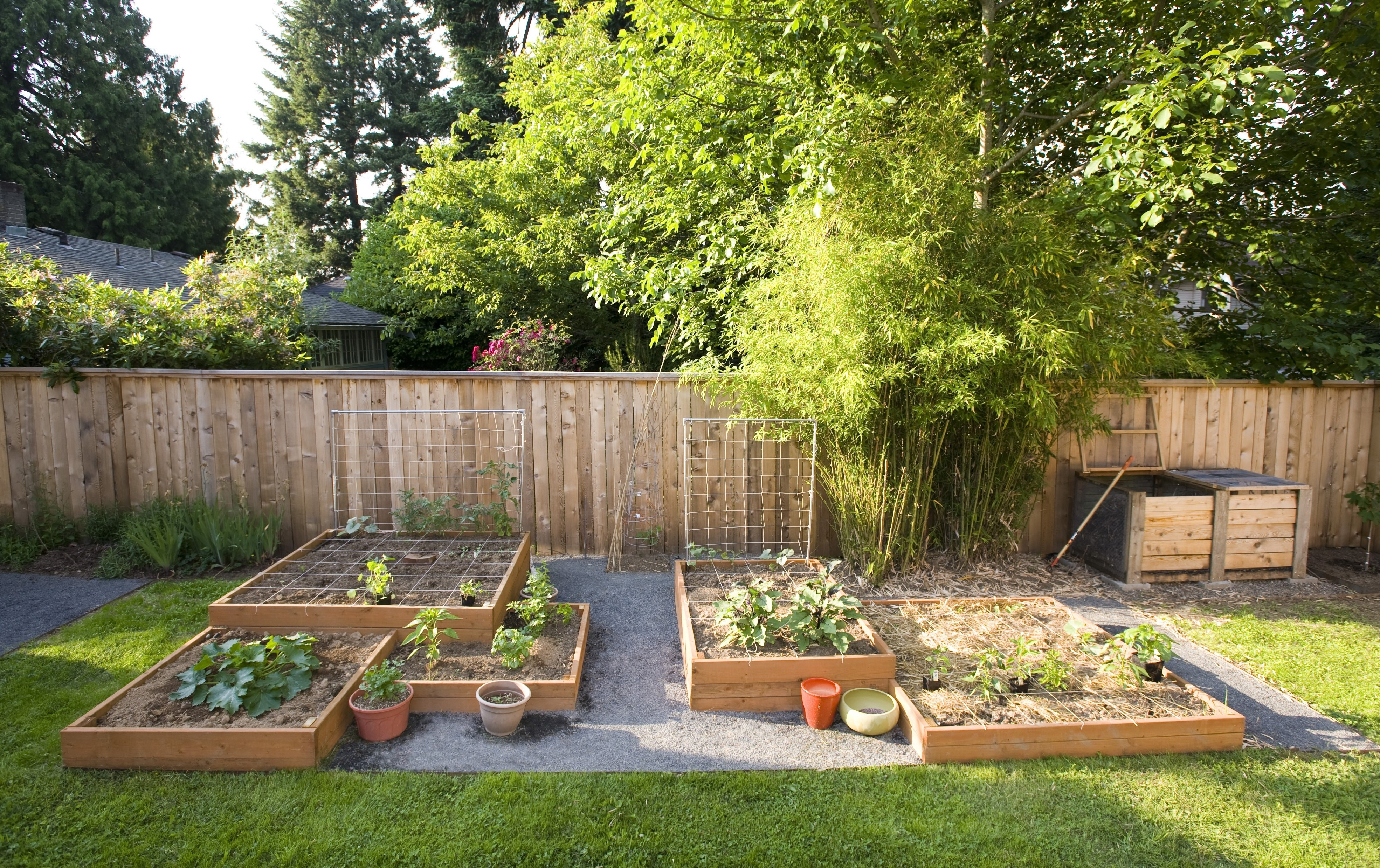 Small Square Foot Backyard Vegetable Garden Ideas With Wood Raised in Backyard Landscaping Ideas Vegetable Garden
