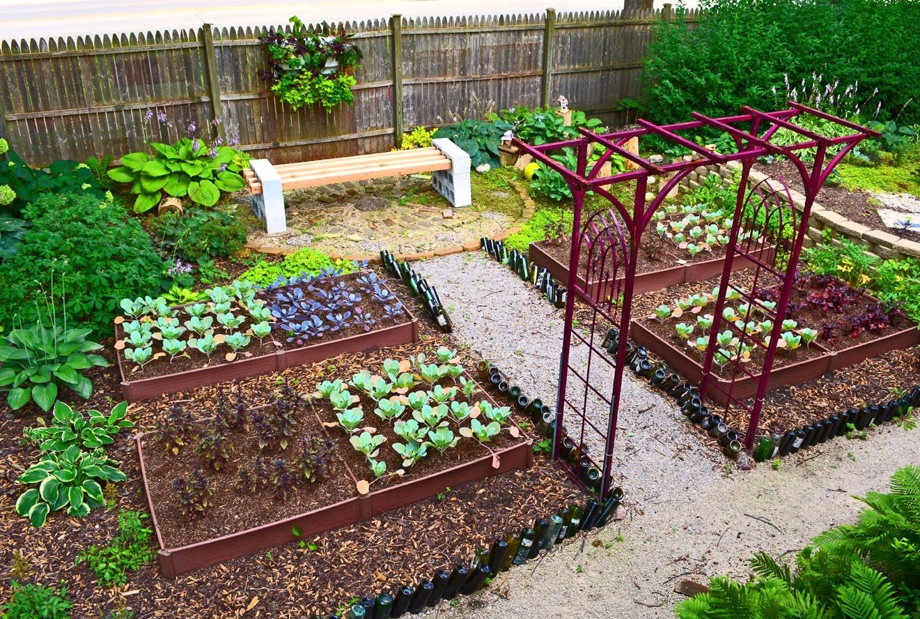 Small Vegetable Garden Ideas Vegetables | The Garden Inspirations within Backyard And Garden Difference