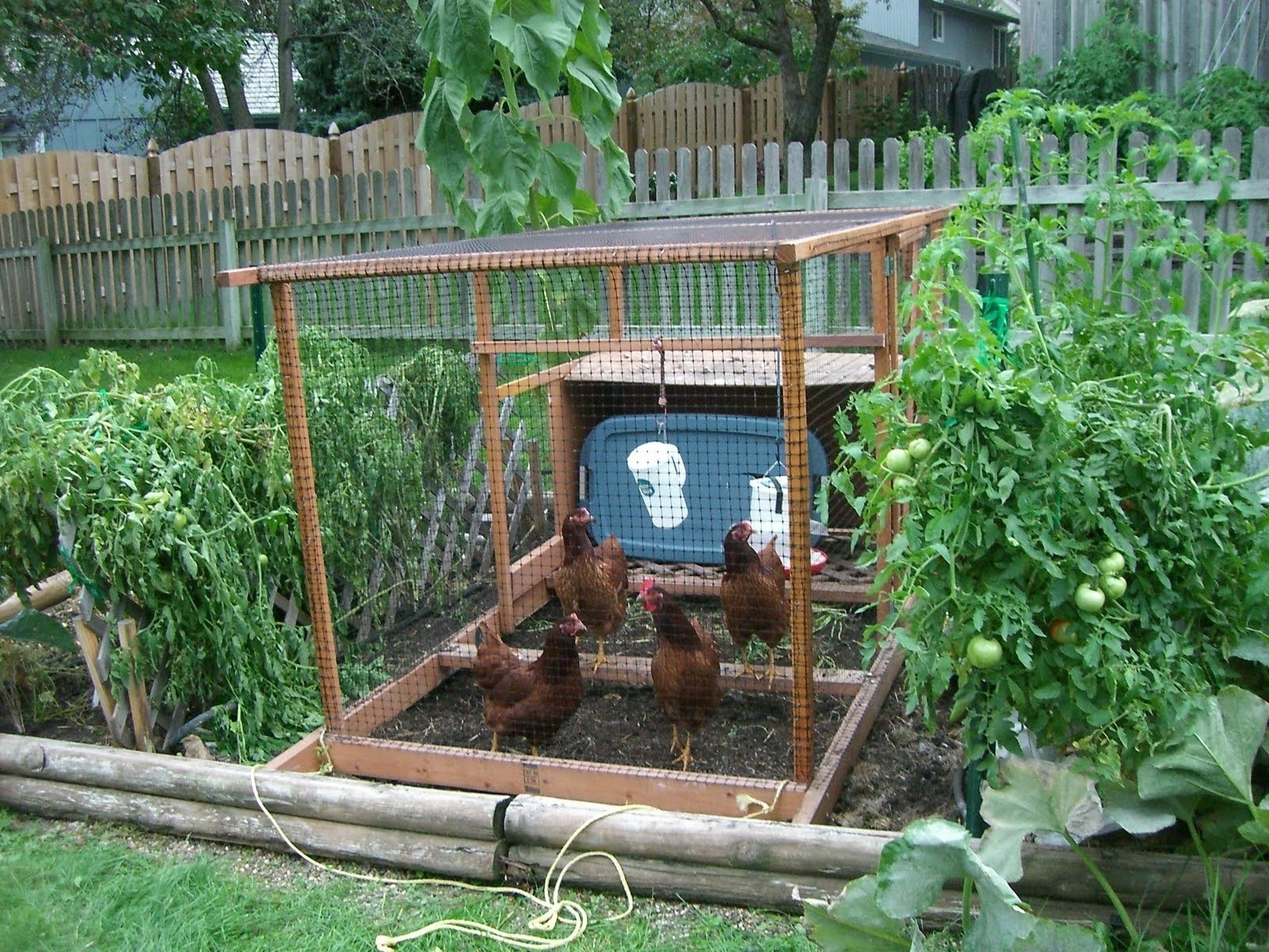 Spectacular-Simple-Backyard-Vegetable-Garden-Ideas -Intended-For-Home-Decoration-For-Interior-Design-Styles with Simple Backyard Vegetable Garden Ideas