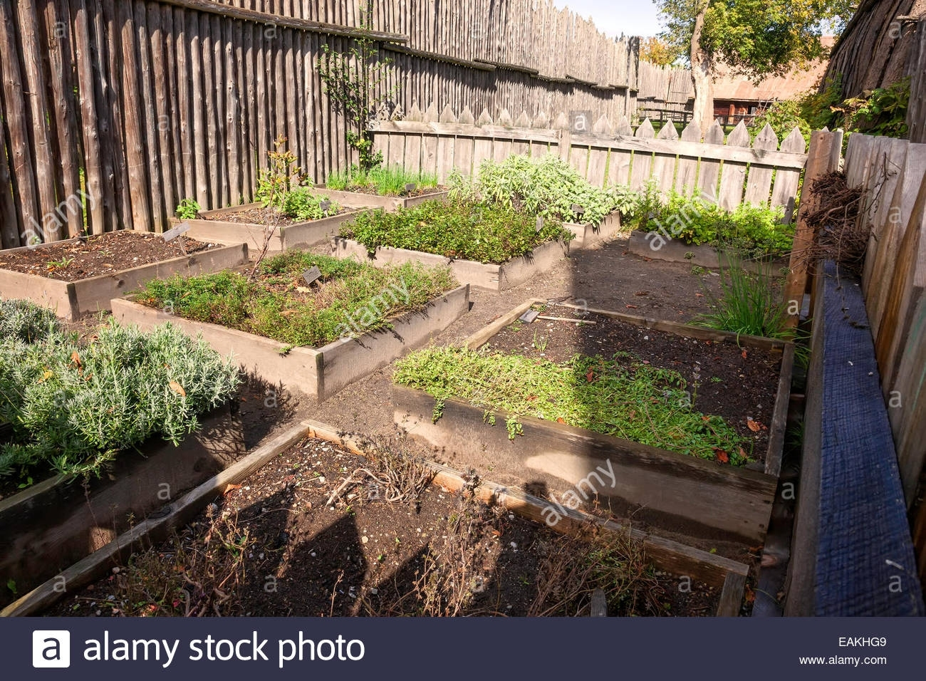Vegetable Garden At Sainte Marie Among The Hurons;original Authentic pertaining to Backyard Vegetable Garden In India