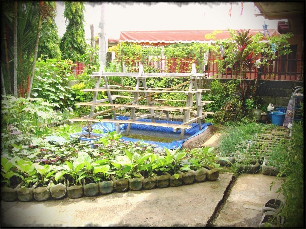 Vegetable Garden Design In The Philippines Small Yard Container in Backyard Gardening In The Philippines