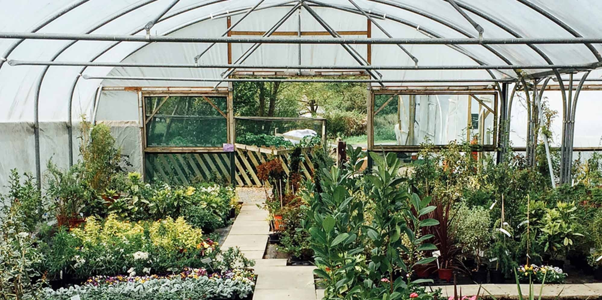 15 Best Chicago Garden And Nursery Stores | Expertise pertaining to Garden House Operates A Commercial Plant Nursery