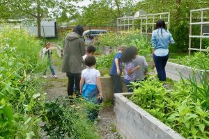 Spec - School Gardens Program throughout School House By The Garden Fees