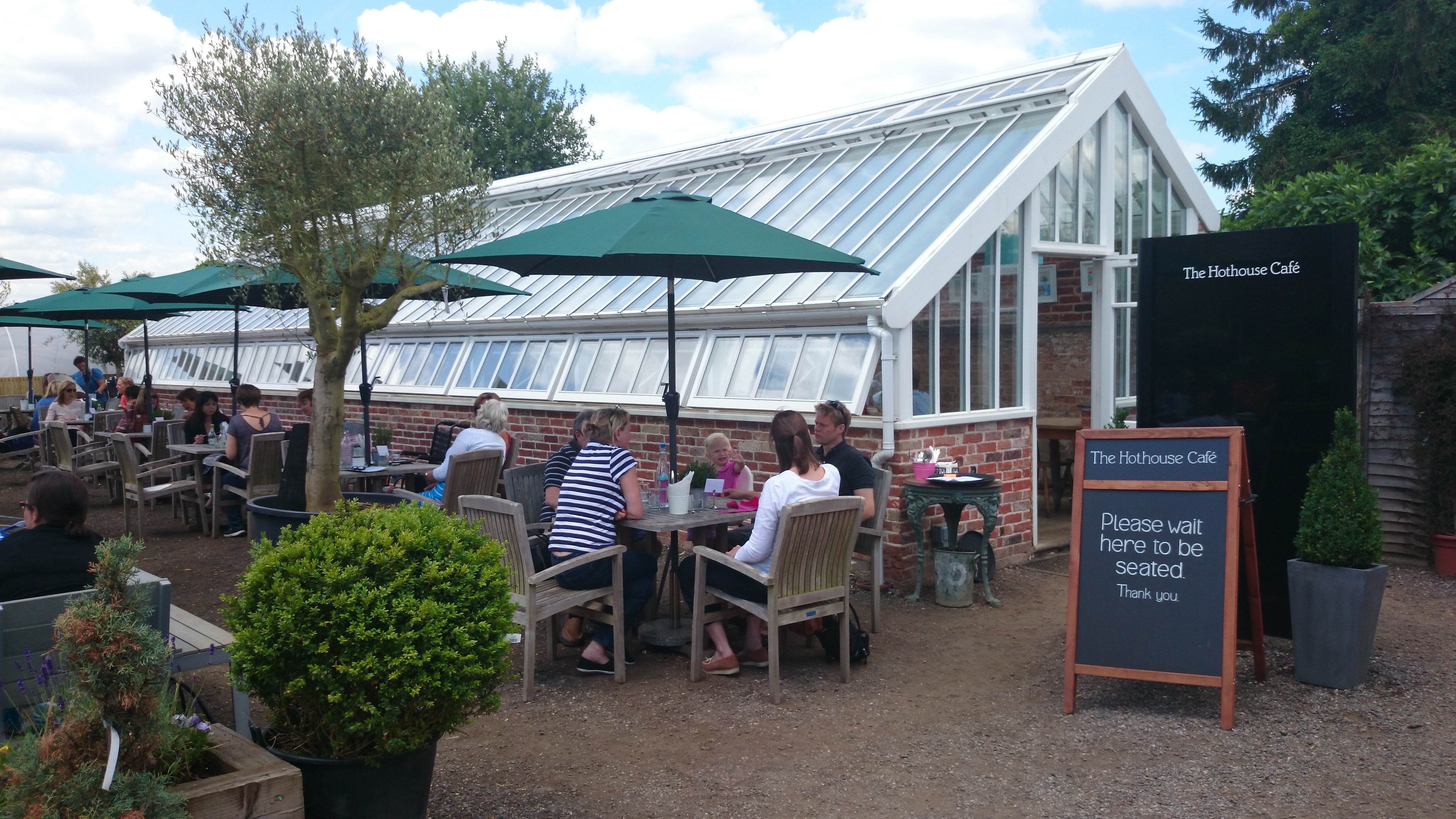 Hothouse Cafe | Ladies Who Lunch In Surrey in Medicine Garden Hot House Cafe