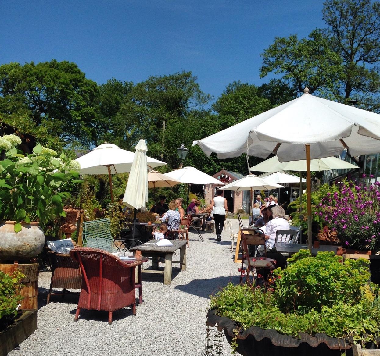 Stydd Gardens,garden Centre,places To Visit In Ribble Valley throughout Garden House Cafe Rochester Menu